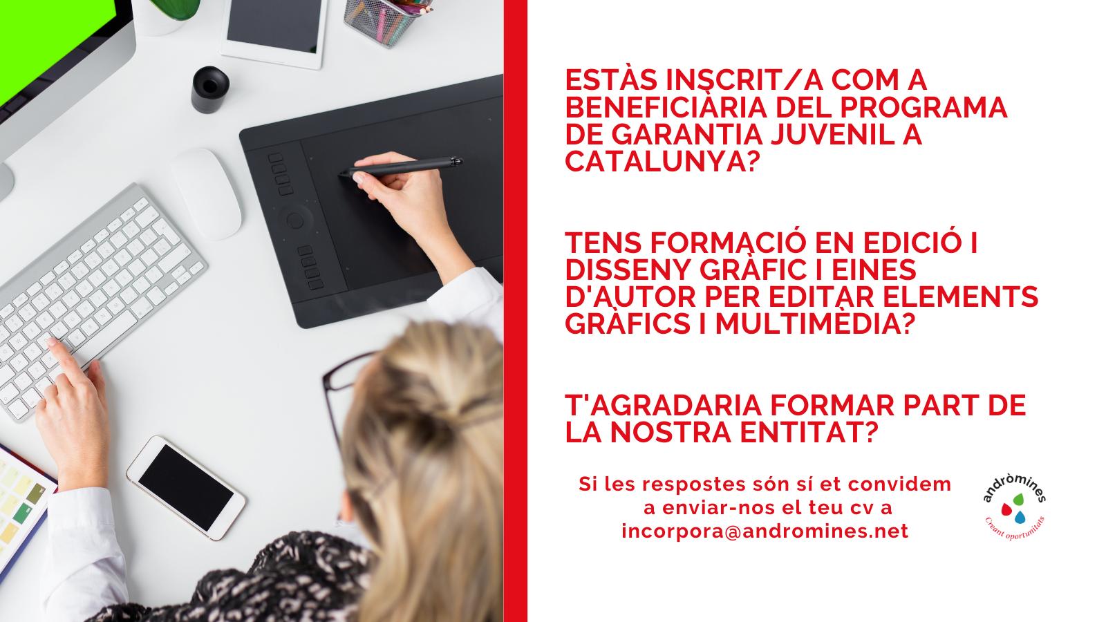 Oferta de treball dissenyador/a d'elements gràfics i multimèdia